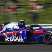 Rookierapport: Gasly heeft zijn draai gevonden bij Toro Rosso
